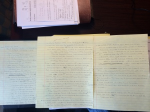 Be glad this is on a typed blog, no way anyone could read the notes I took from the hearing.